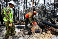 Australian Army engineer, Sapper Cameron Amri, from the 5th Combat Engineer Regiment, chainsaws a fallen tree as Sapper Ashley Crasto (left) supervisors during the 'Make Safe' program in the fire affected area of Yellow Rock in the Blue Mountains, NSW.