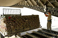 A United States Defence Force member guides a forklift during the unloading of military stores from the Royal Australian Air Force C-17 Globemaster at Erbil Airport in northern Iraq.