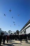 816 and 723 Squadron conduct a fly past for attendees at the 808 Squadron Commissioning held at HMAS Albatross.